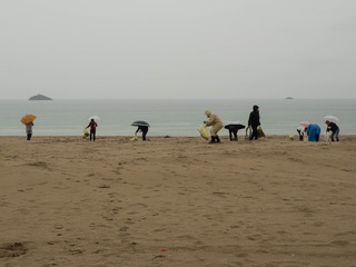 浜清掃タイ料理2.jpg
